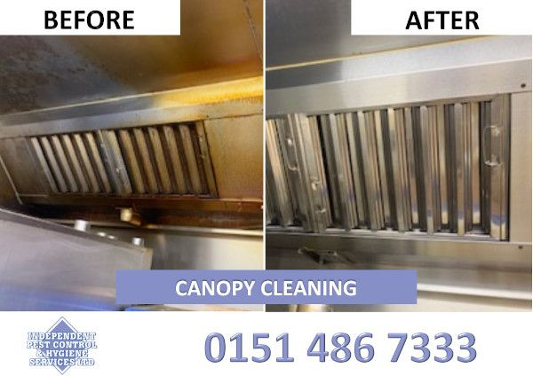 An image showcasing canopy cleaning as part of our hygiene services.