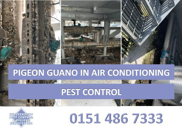 An image showing Pigeon Guano in air conditioning as part of our pest control services